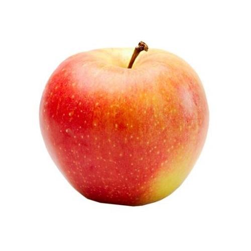 Apple Regular Gala/Must image
