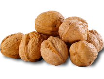 Walnuts, in shell image