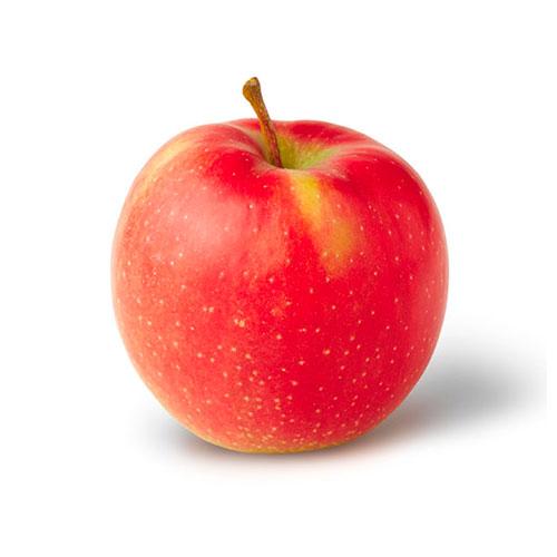 Apple Jonagored image